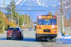 Bilisten ignorerar exponera ljus för skolbuss royaltyfria bilder
