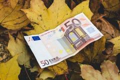 Bill de 50 mentiras euro en las hojas de otoño caidas amarillas, concep Fotografía de archivo libre de regalías