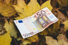 Bill of 50 Euro lies on the yellow fallen autumn leaves,  concep. T of falling price of the Euro Royalty Free Stock Photography