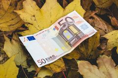 Bill of 50 Euro lies on the yellow fallen autumn leaves,  concep. T of reducing the price of Euro Stock Images