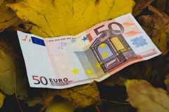 The bill of fifty Euros lies on the fallen yellow autumn leaf, the concept of the fall of the Euro stock photos