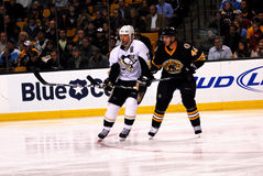 Bill Guerin and David Krejci (NHL Hockey) Stock Image