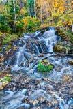 Bill Hill Springs Provincial Park, Alberta, Canada Stock Image