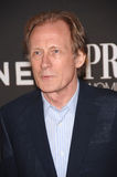 Bill Nighy Stock Afbeelding