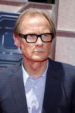 Bill Nighy Lizenzfreies Stockbild
