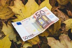 Bill von 50 Eurolügen auf dem gelben gefallenen Herbstlaub, concep Stockbilder