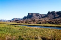 Bill Williams Wetlands Preserve, Arizona Etats-Unis Photo stock