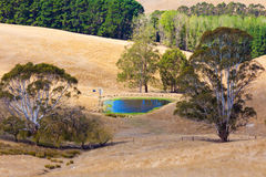 Australia countryside billabong stock photography
