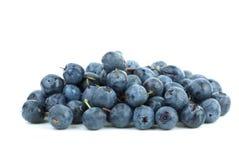 billberries складывают малое стоковое фото rf