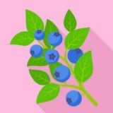 Billberry gałąź ikona, mieszkanie styl royalty ilustracja
