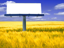 Billboard. Big blank billboard in field with blue sky royalty free stock photo