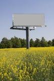 Billboard in field. Big billboard in field with colza Stock Photos
