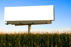 Billboard in a field of corn Stock Photography