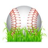 Bille de base-ball Image stock