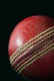 Bille de cricket Photos libres de droits