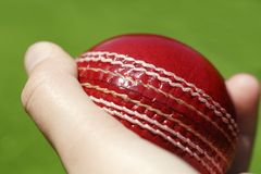Bille de cricket photo stock