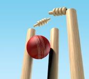 Bille de cricket heurtant des guichets Images libres de droits
