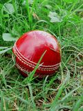 Bille de cricket rouge Photographie stock libre de droits