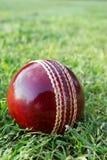Bille de cricket sur l'herbe verte. Photographie stock