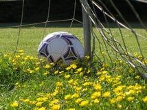 Bille de football Photographie stock