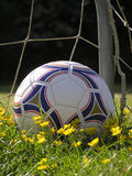 Bille de football Photo libre de droits