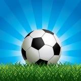 Bille de football sur l'herbe verte illustration stock