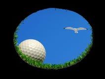 Bille de golf avec la mouette images stock