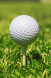 Bille de golf blanche Photographie stock libre de droits