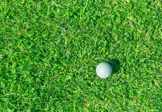 Bille de golf sur l'herbe Photos stock