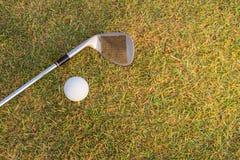 Bille de golf sur le té blanc image stock