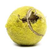 Bille de tennis mâchée Photographie stock