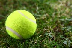 Bille de tennis sur l'herbe verte Photographie stock libre de droits