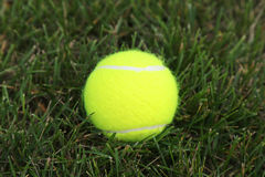 Bille de tennis sur l'herbe verte Photos stock