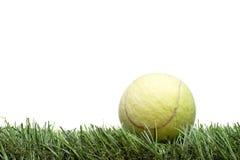Bille de tennis sur la pelouse Photo libre de droits