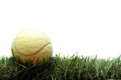 Bille de tennis sur la pelouse photos libres de droits