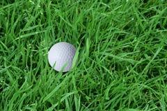 Bille et herbe de golf Photo libre de droits