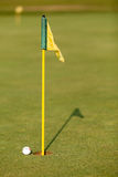 Bille et indicateur de golf de pratique sur le putting green Photos libres de droits