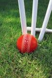 Bille et tronçons de cricket Photographie stock