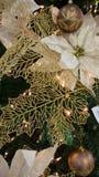 Billes d'or de Noël photographie stock libre de droits