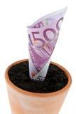 Billet d'Euro dans le bac de fleur. Taux d'intérêt, accroissement. Image stock