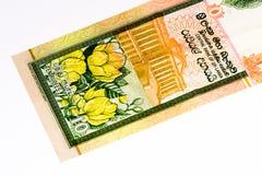 Billet de banque de Currancy de l'Asie Photos libres de droits
