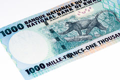 Billet de banque de devise de l'Afrique Photo stock