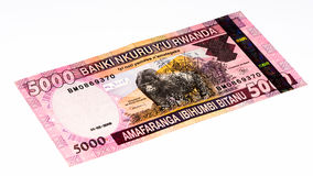 Billet de banque de devise de l'Afrique Image stock