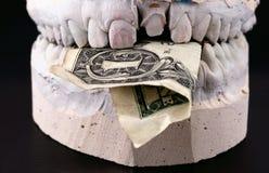 Billet de banque de prise de mâchoires Image stock