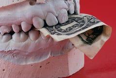 Billet de banque de prise de mâchoires Photos libres de droits