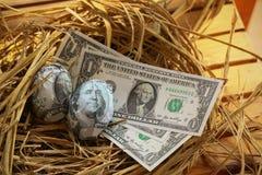 Billet de banque du dollar en magots, élevage des affaires et affaires de genèse, affaires nouvelles commençant par des billets d Photos libres de droits