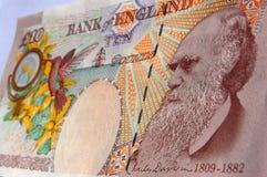 Billete de banco de Charles Darwin imagenes de archivo