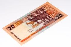 Billete de banco de la moneda de África Fotos de archivo libres de regalías