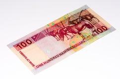 Billete de banco de la moneda de África Fotografía de archivo libre de regalías