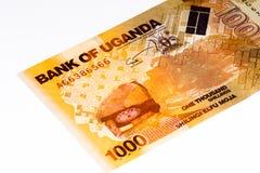 Billete de banco de la moneda de África Imagenes de archivo